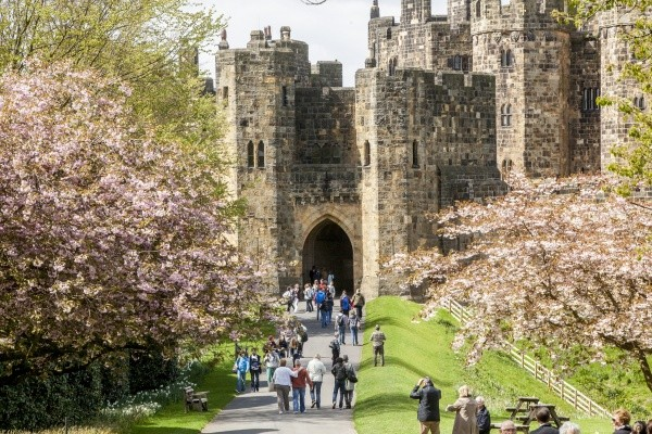 Alnwick Castle Unlimited 12 Month Passes